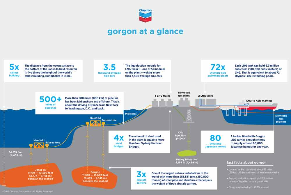 Gorgon Project In Numbers Infographic