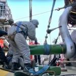 WATCH: Statoil Boosts Activity at the Aasta Hansteen Field